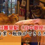 日暮里駅(谷中銀座) PC作業・勉強できるカフェ